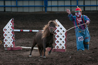Not many things funnier than a midget jumping a pony.....